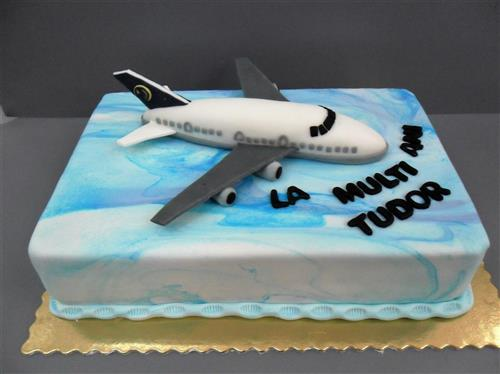 Tort tematic avion